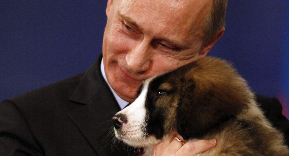 Vladimir Poutine et un chiot karakatchan Buffy
