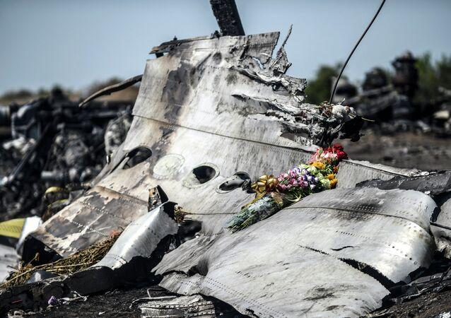 Débris du Boeing malaisien abattu dans le Donbass