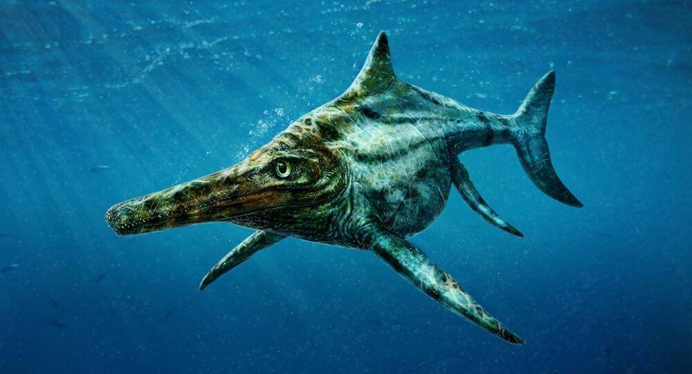 Un dinosaure marin