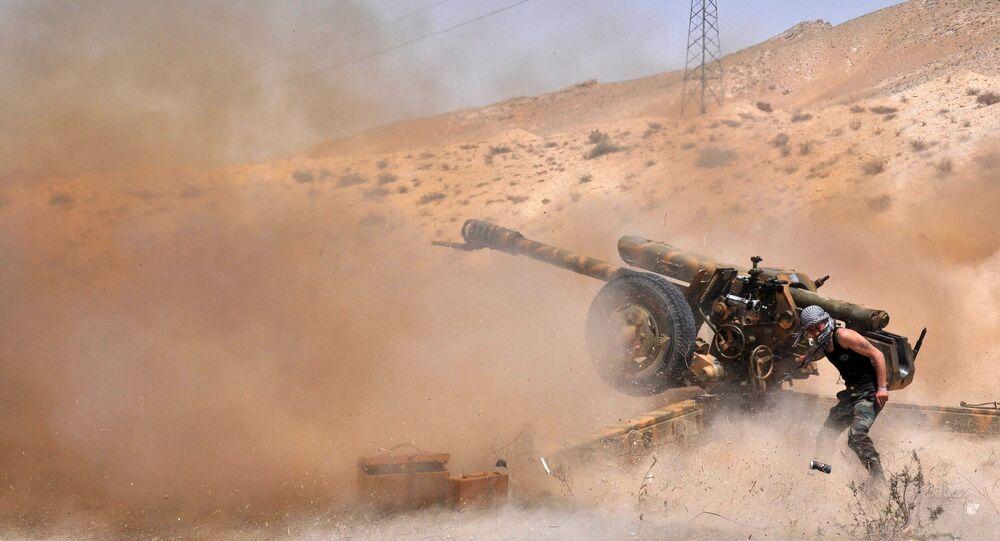 Terroristes en Syrie, Palmyre