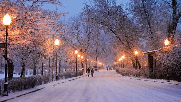 Un parc de Moscou - Sputnik France
