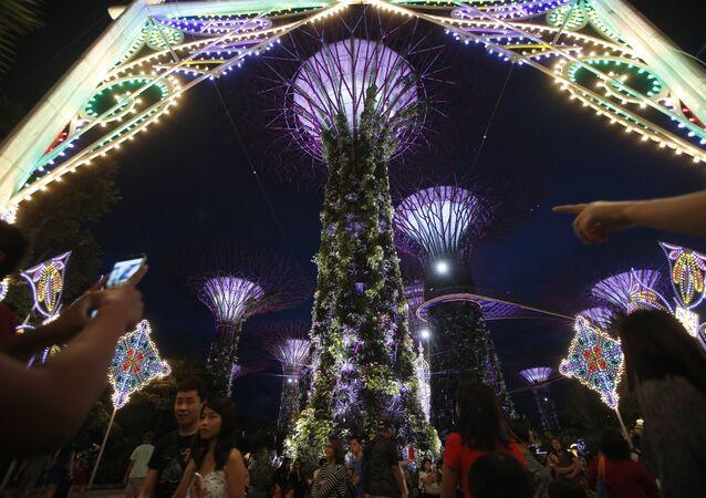 Les arbres gigantesques dans le parc Gardens by the Bay à Singapour