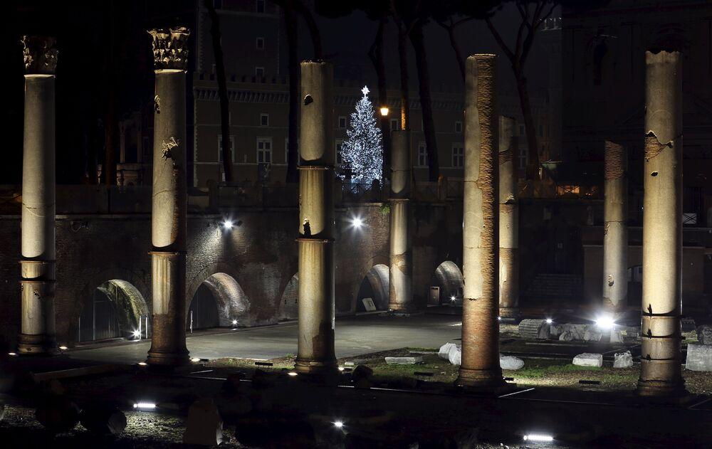 Le sapin de Noël dans les ruines antiques de Rome