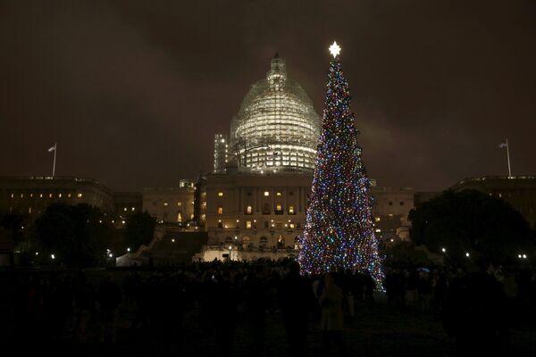 Le sapin de Noël devant le Capitole à Washington - Sputnik France