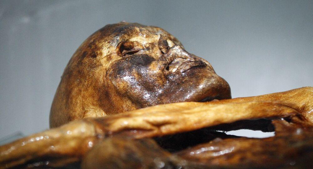 Ötzi l'homme des glaces continue d'étonner les scientifiques