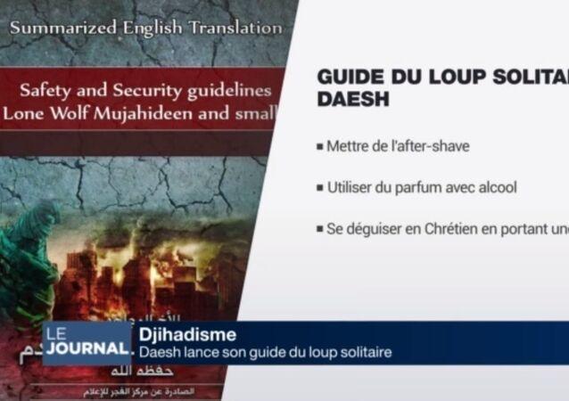 Daech publie un guide pour terroristes débutants