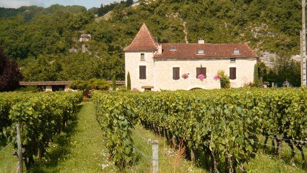 A Cahors chateau and vineyard - Sputnik France