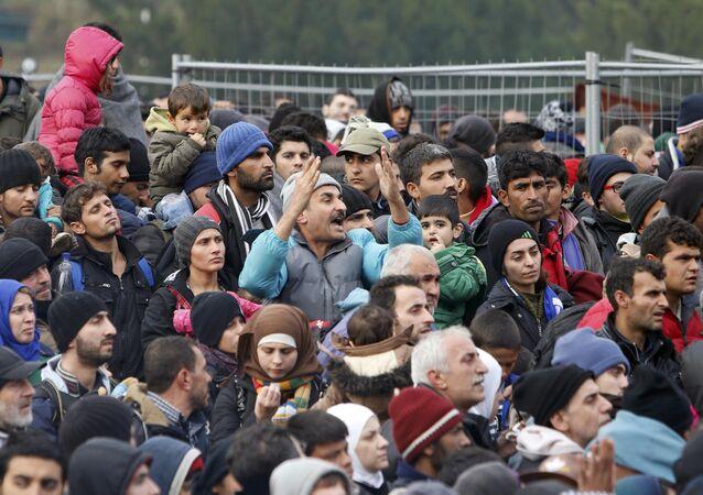 Migrants. Image d'illustration