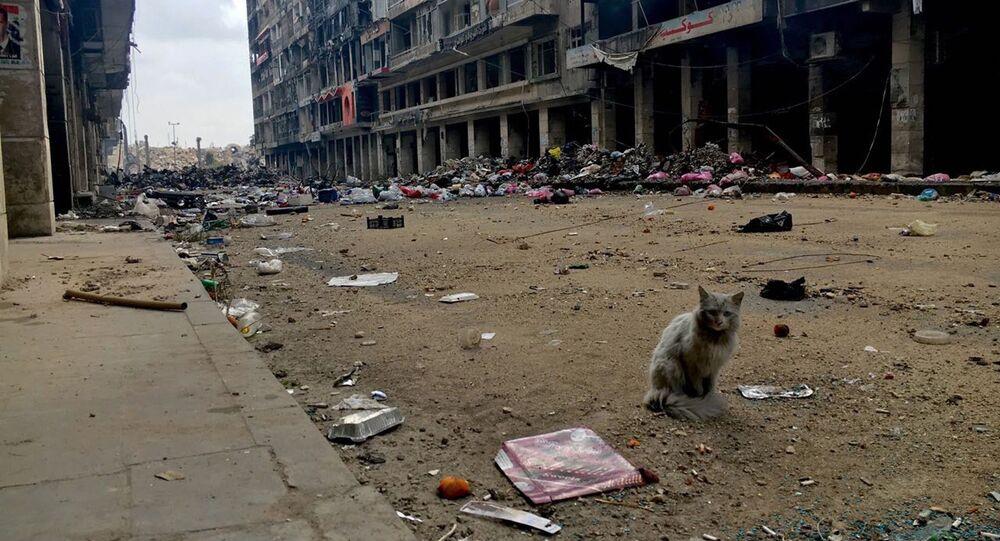 Destructions à Alep
