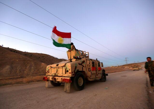 Les Kurdes libèrent une Suédoise captive de Daech en Irak