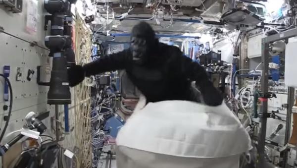 Scott Kelly déguisé en gorille - Sputnik France