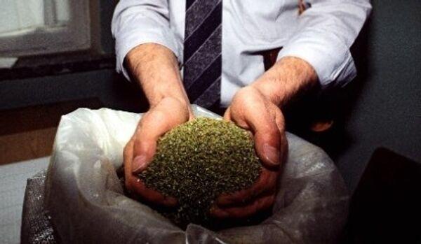 Saisie record de 42,7 tonnes de cannabis en Méditerranée par l'Italie - Sputnik France