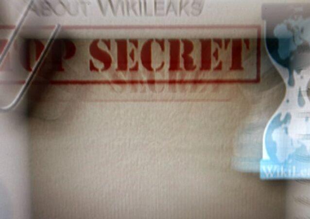 WikiLeaks publie un rapport de la CIA sur la lutte contre les insurgés