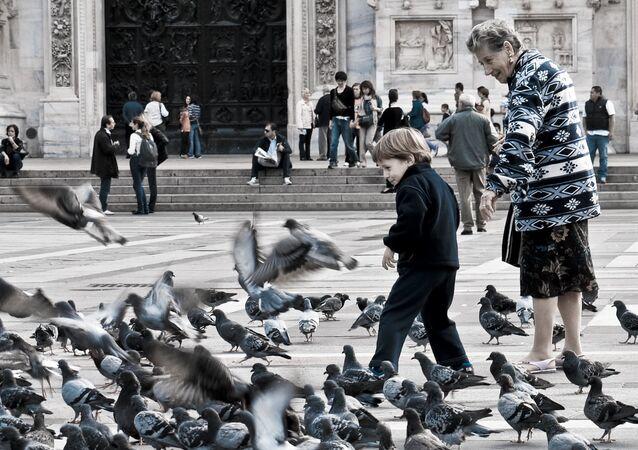 Des pigeons sur une place de Milan