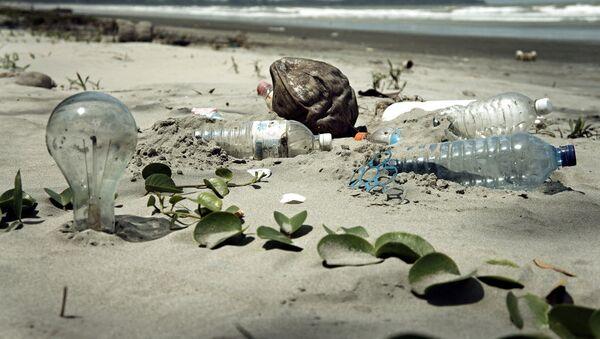 L'homme a-t-il irréversiblement pollué l'océan? - Sputnik France