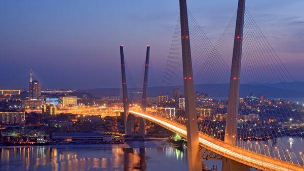 Ночной вид моста во Владивостоке через залив Золотой Рог - Sputnik France