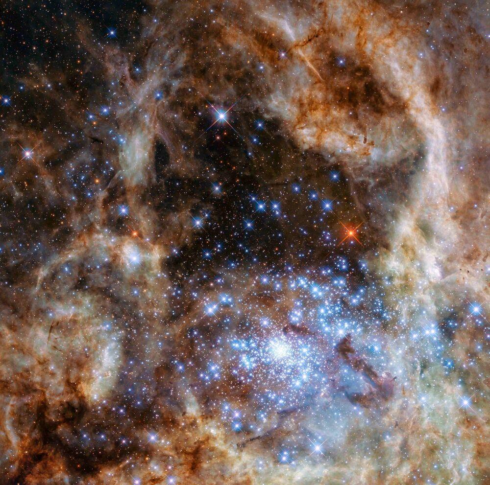 Quoi de neuf dans l'univers ?