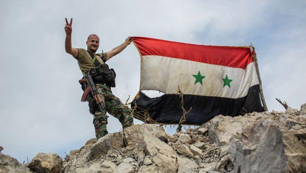 Militaire syrien (archives) - Sputnik France