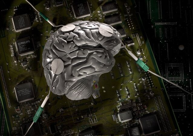 Un cerveau