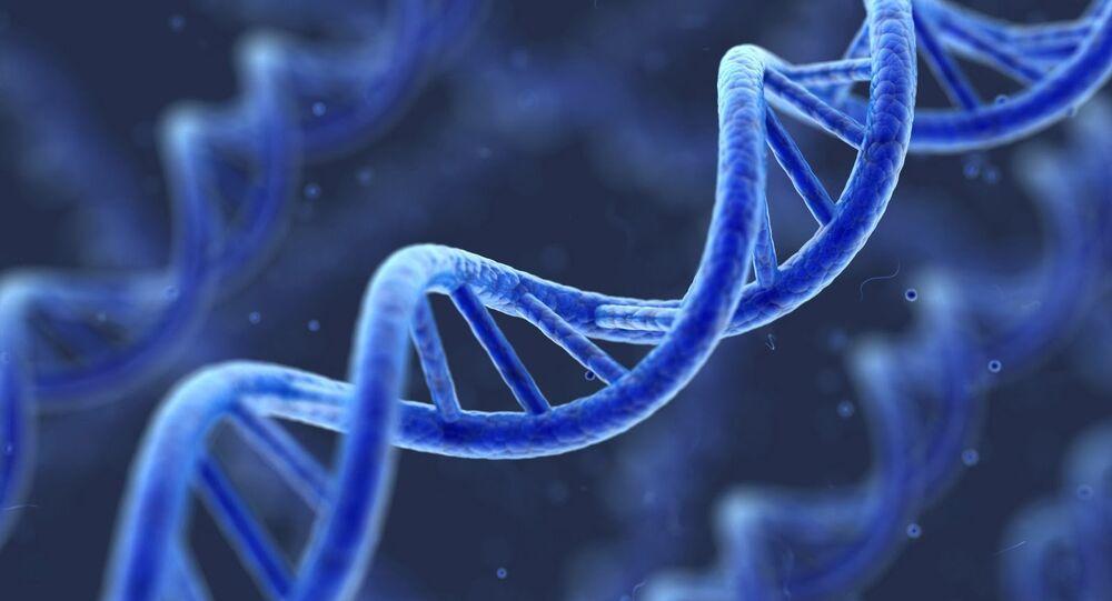 Модель молекулы ДНК