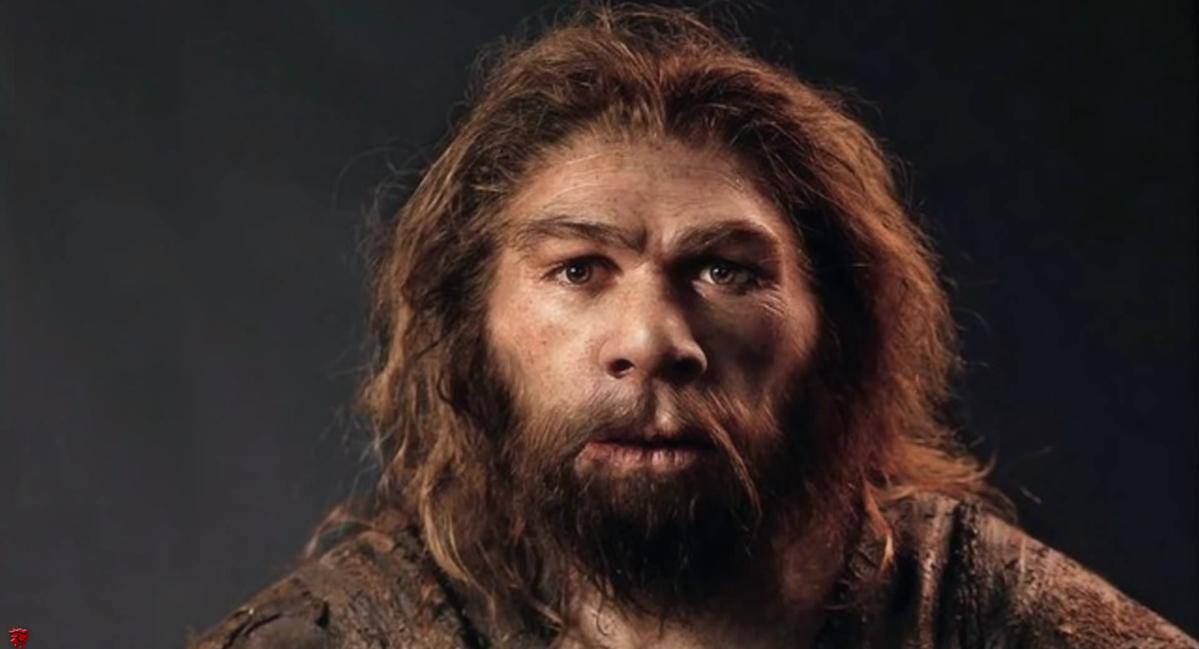 Mariage voué à l'échec: quand une Cromagnonne rencontre un Néandertalien -  Sputnik France