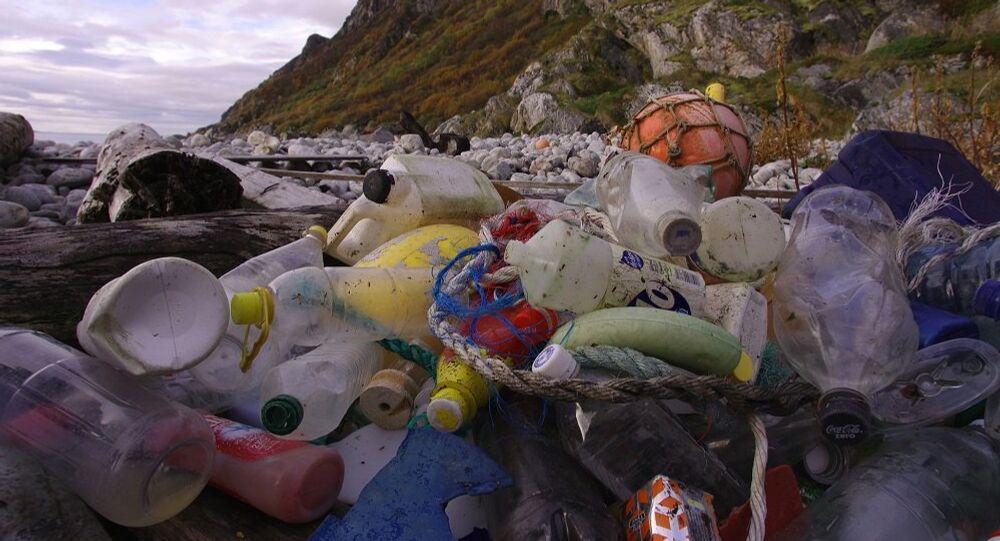 Pollution marine: les plastiques, premiers prédateurs des océans
