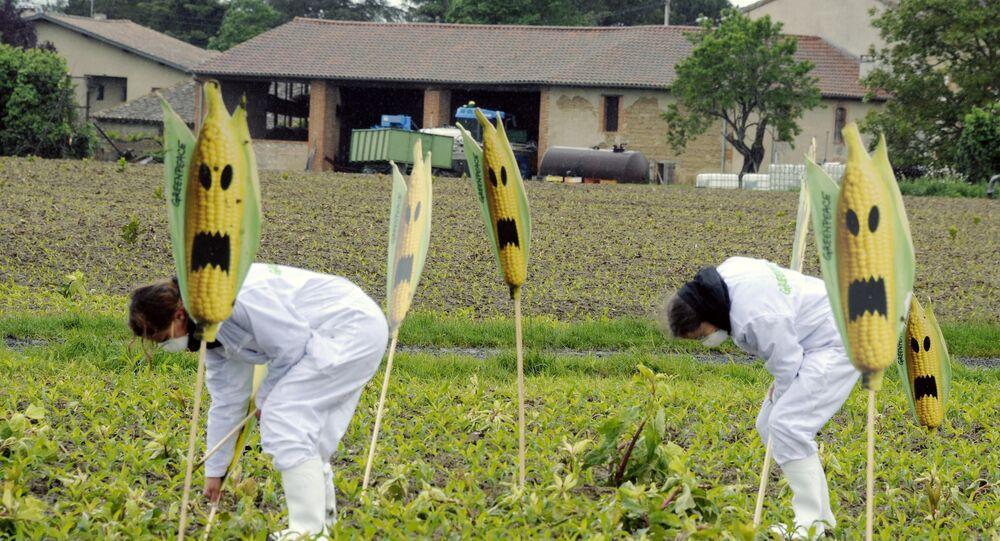 L'Attaque des clones: les USA créeraient des plantes-espions génétiquement modifiées