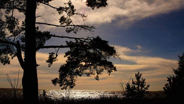 La côte russe du golfe de Finlande - Sputnik France