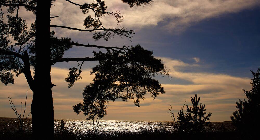 La côte russe du golfe de Finlande