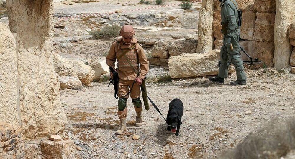 Les sapeurs russes retrouvent un immense arsenal de Daech dissimulé à Palmyre