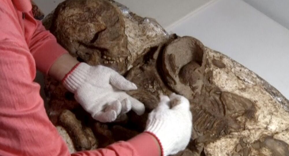 Une momie pas comme les autres découverte à Taïwan