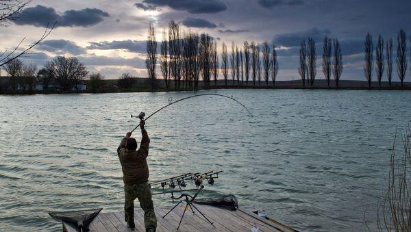 Merci de ne pas pêcher dans les toilettes des JO de Rio! - Sputnik France