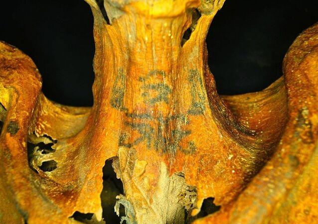 Des tatouages couvrent le cou de la momie.