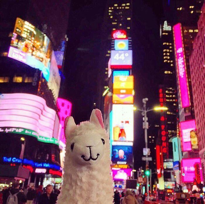 Sur Times Square.