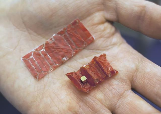Ce robot-origami qui retire de l'estomac les objets avalés
