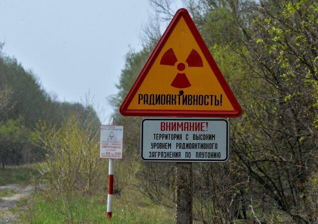 L'Ukraine déploie la Garde nationale à Tchernobyl