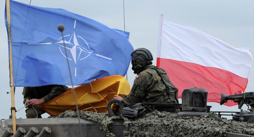 Militaires polonais prennent part aux exercices de l'Otan (juin 2015)