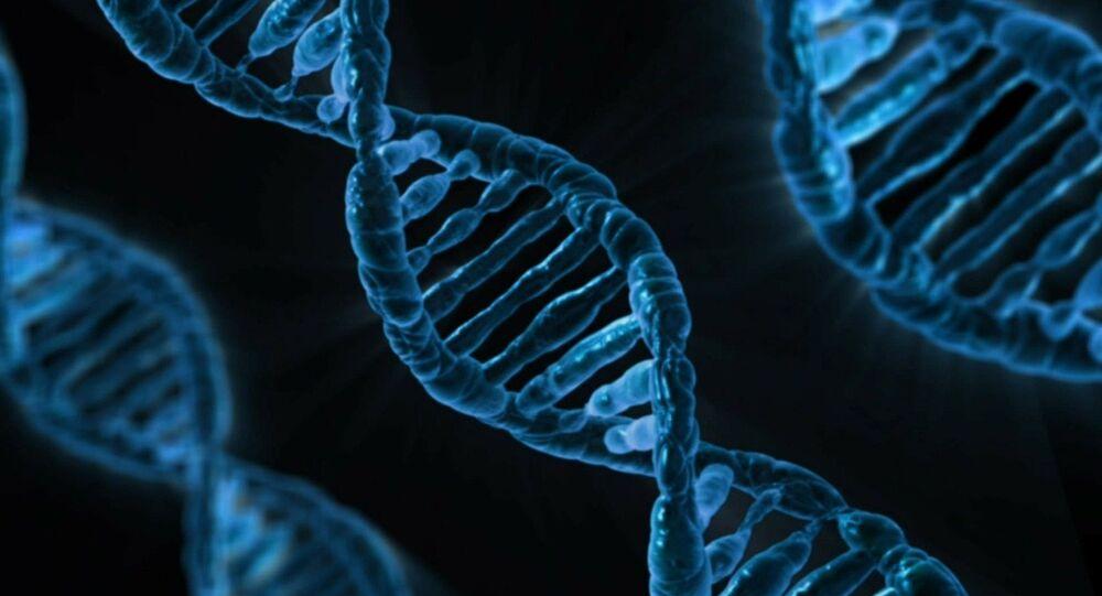 ADN (image d'illustration)