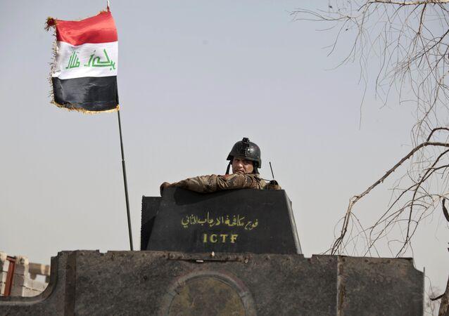 Un soldat irakien, Falloujah