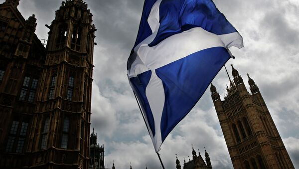 A member of public flies a giant Scottish Saltire flag outside the Houses of Parliament shortly before Scotland First Minister Nicola Sturgeon posed with newly-elected Scottish National Party (SNP) MPs during a photocall in London on May 11, 2015 - Sputnik France