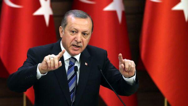 Turkish President Recep Tayyip Erdogan (File) - Sputnik France