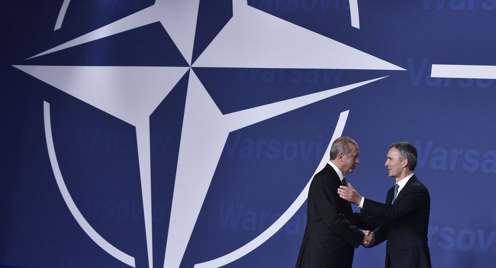 Le chef de l'Otan Jens Stoltenberg et le président turc Tayyip Erdogan
