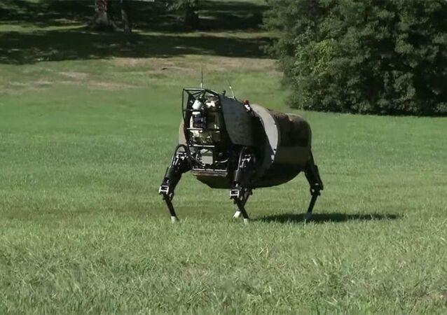 Alpha Dog, un robot de soutien pour les Marines US