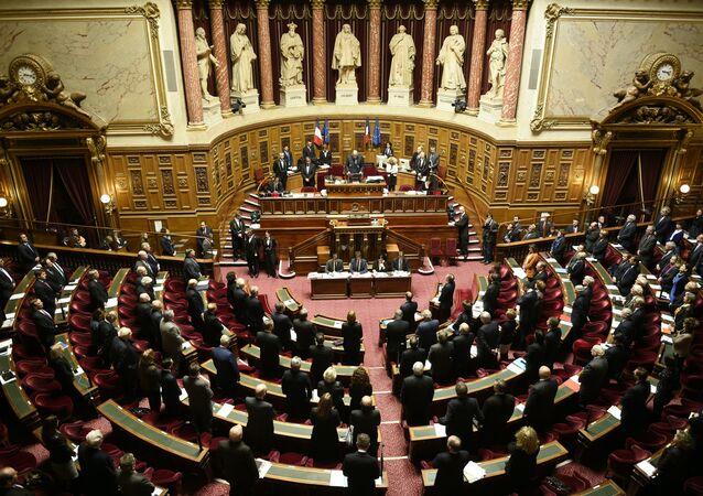 le Sénat français (image d'illustration)