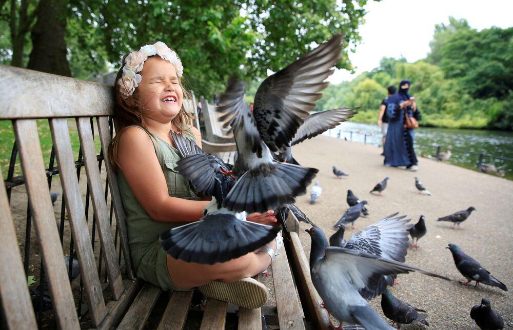 Une fille nourrit des pigeons dans un parc de Londres
