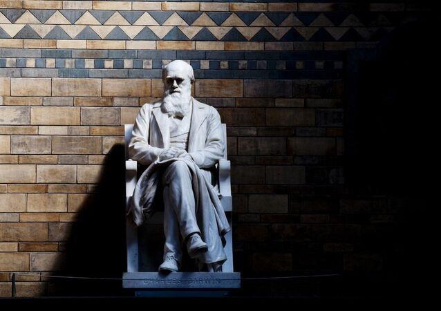 Sculpture de Charles Darwin