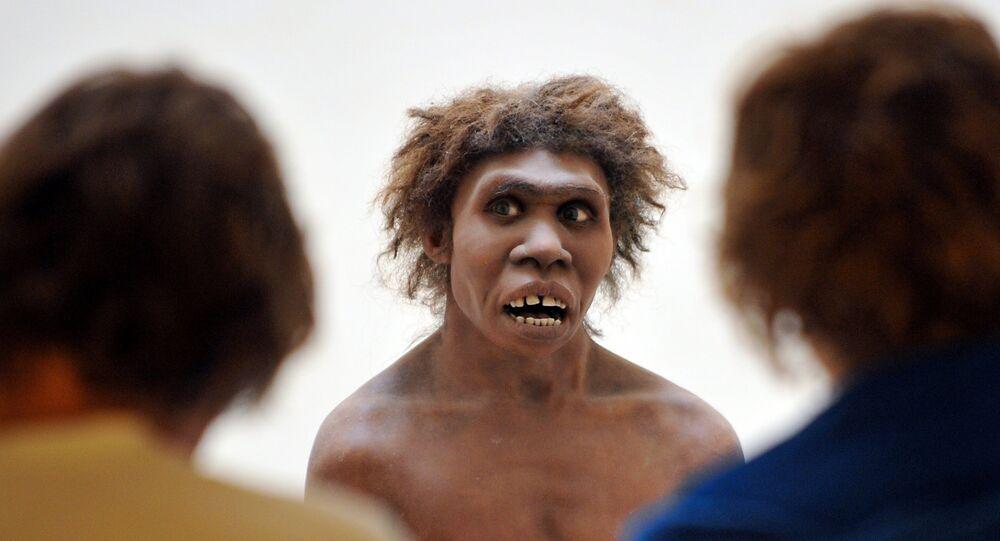 Néandertalien. Modèle.