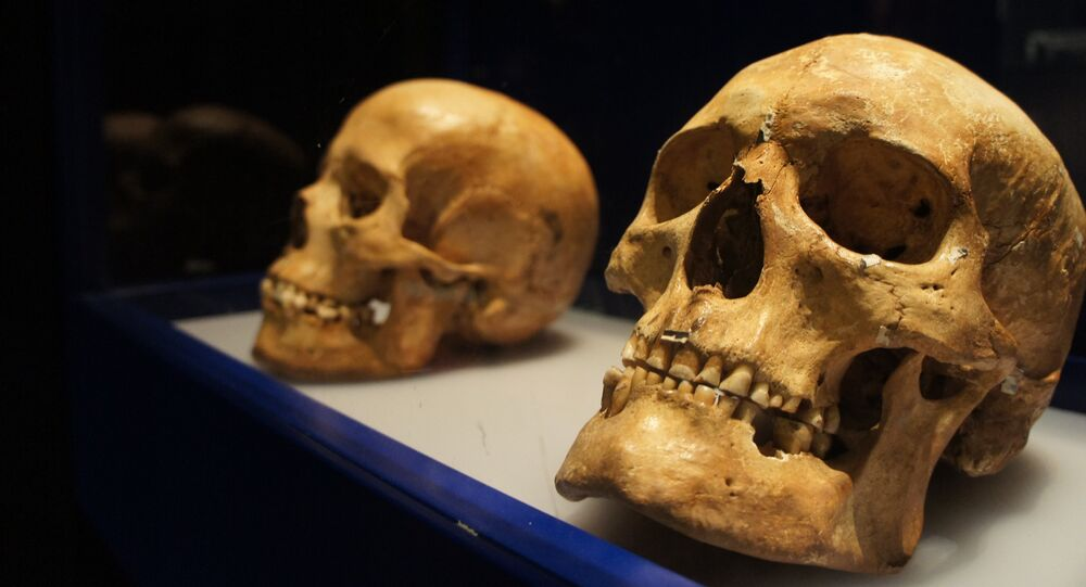Des archéologues ont découvert un autre crâne d'extraterrestre