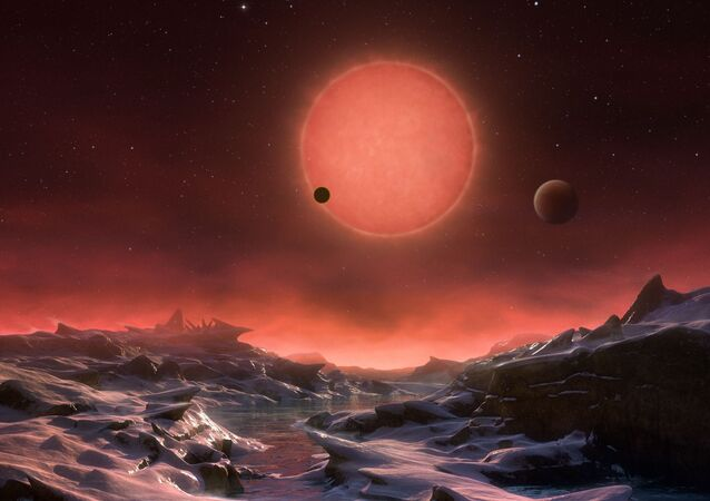 TRAPPIST-1d