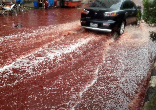 Les rivières pourpres de Dacca